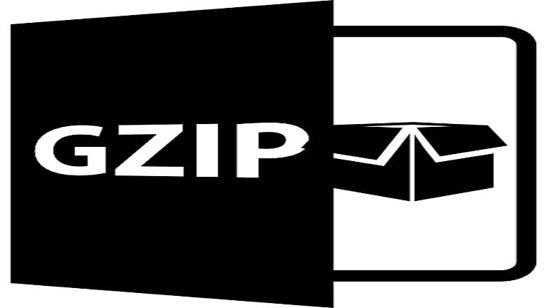 فشرده سازی Gzip چیست؟