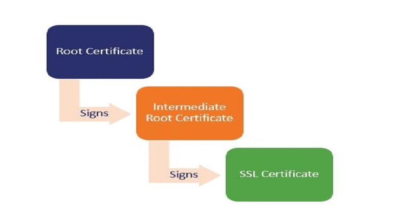 خروجی گرفتن از گواهینامه Intermediate SSL Certificate در ویندوز
