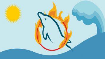 رفع خطای MySQL server has gone away